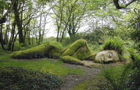 Interesting garden England