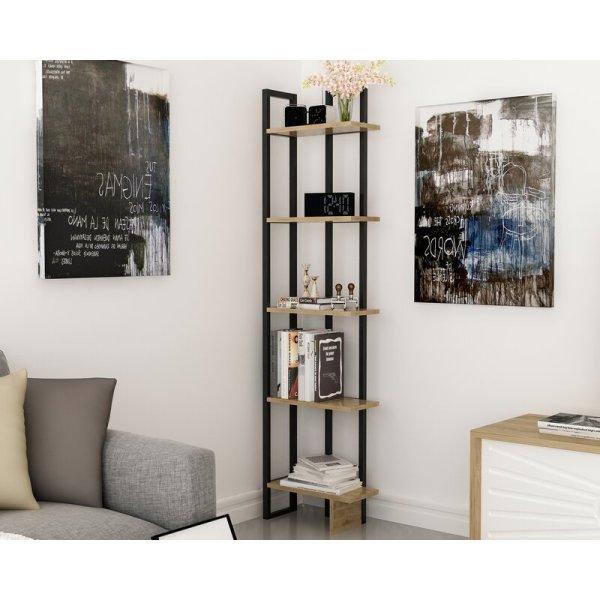 dolan-simple-but-practical-5-tier-shelves-corner-bookcase