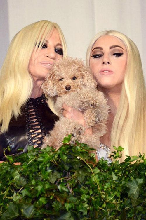 Versace - Lady Gaga