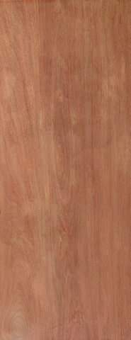 JB Kind External Ply Flush Hollow Core Door