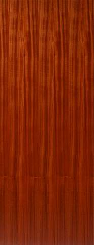 JB Kind Internal Sapele Flush Hollow Core Door