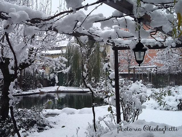 Immagine di #biopiscine o #biolaghi in inverno ricorperti dalla neve.
