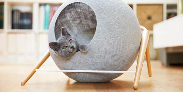 Cuccia design per il tuo gatto.