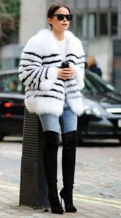 fur (8)