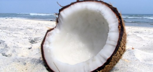 Beneficios del agua de coco para el pelo seco