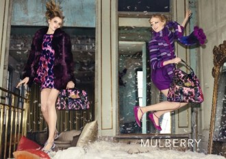 mulberry.01