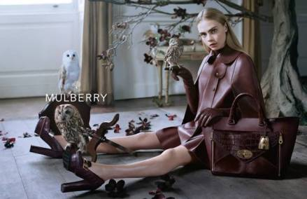 mulberry-01