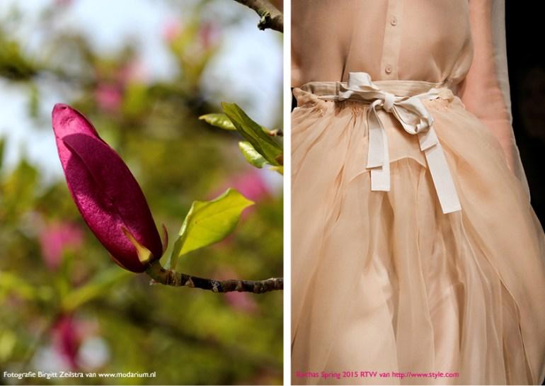 Modarium Think Pink moodboard 10 met een afbeelding uit de spring 2015 RTW collectie van Rochas en een bloemknop van een roze magnolia