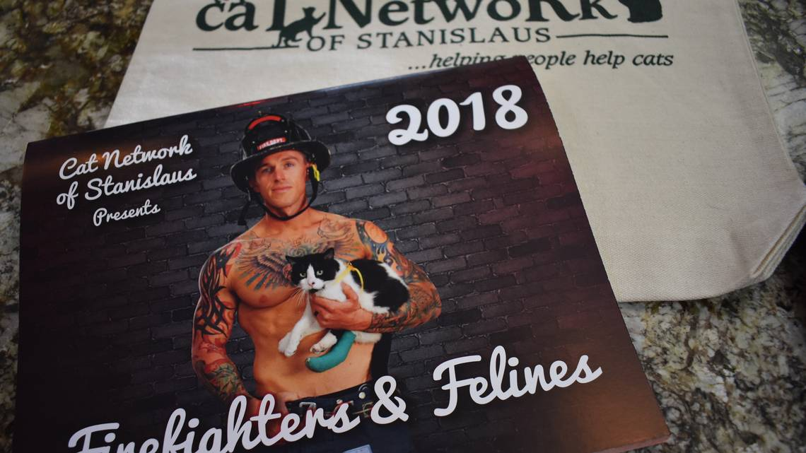 Area firefighters posed with adoptable cats for a calendar that will benefit the Cat Network of Stanislaus. Some proceeds also will go to help animals affected by October's fires in wine country.