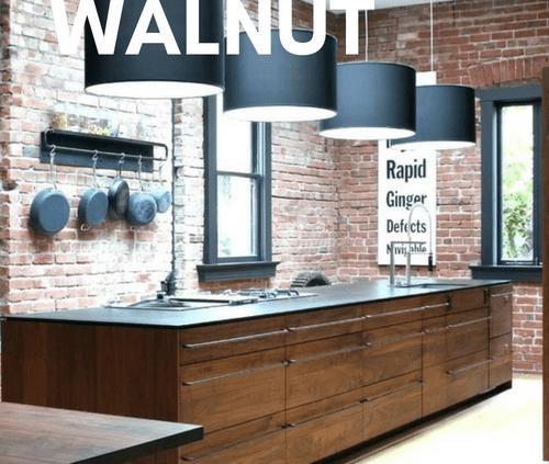 walnut cabinets kitchen ninja system pulse mod cabinetry modern