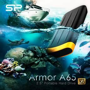 Silicon Power Armor A65