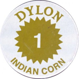stoffenverf voor warm water - indian corn - 01