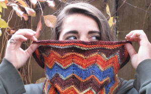 Autumn Chevron Cowl in ModeWerk Worsted