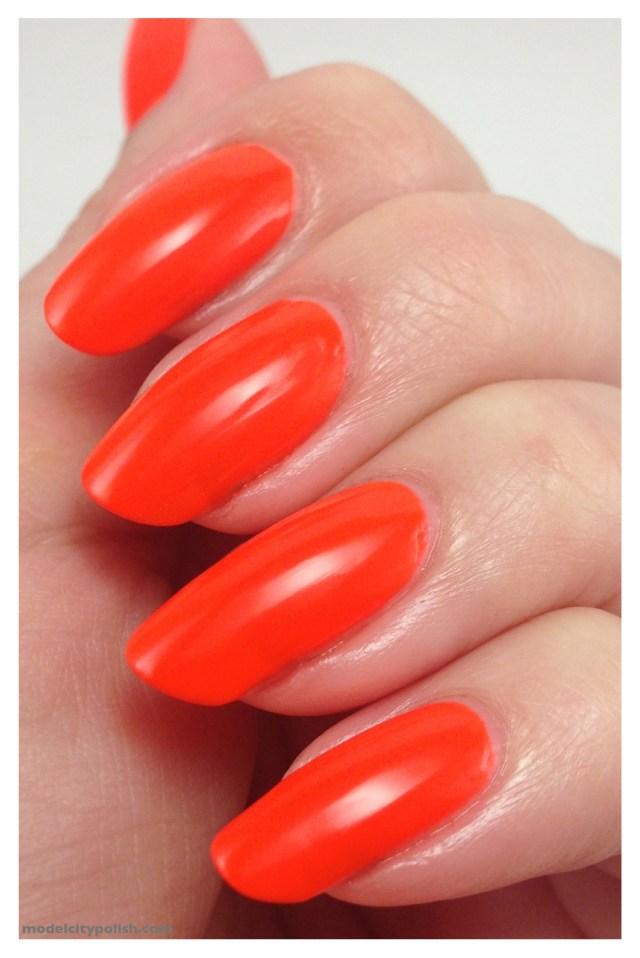 Iconic Orange 3