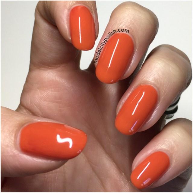 burnt-amber-3