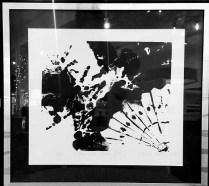 """Nancy Nixon 'Fan and Chicken Feet'1987. 19.5"""" x 21"""" (incl. frame) 125.-"""
