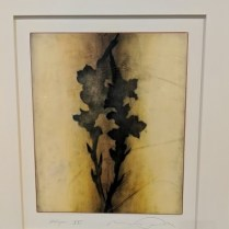 "'Halcyon #21' Encaustic painting on rag paper. Matted and framed. Purchased from the Forster White Gallery. 28""w x 31.5"" h. Orig. List: $1,600. plus framing. Modele's Price: 550.-"