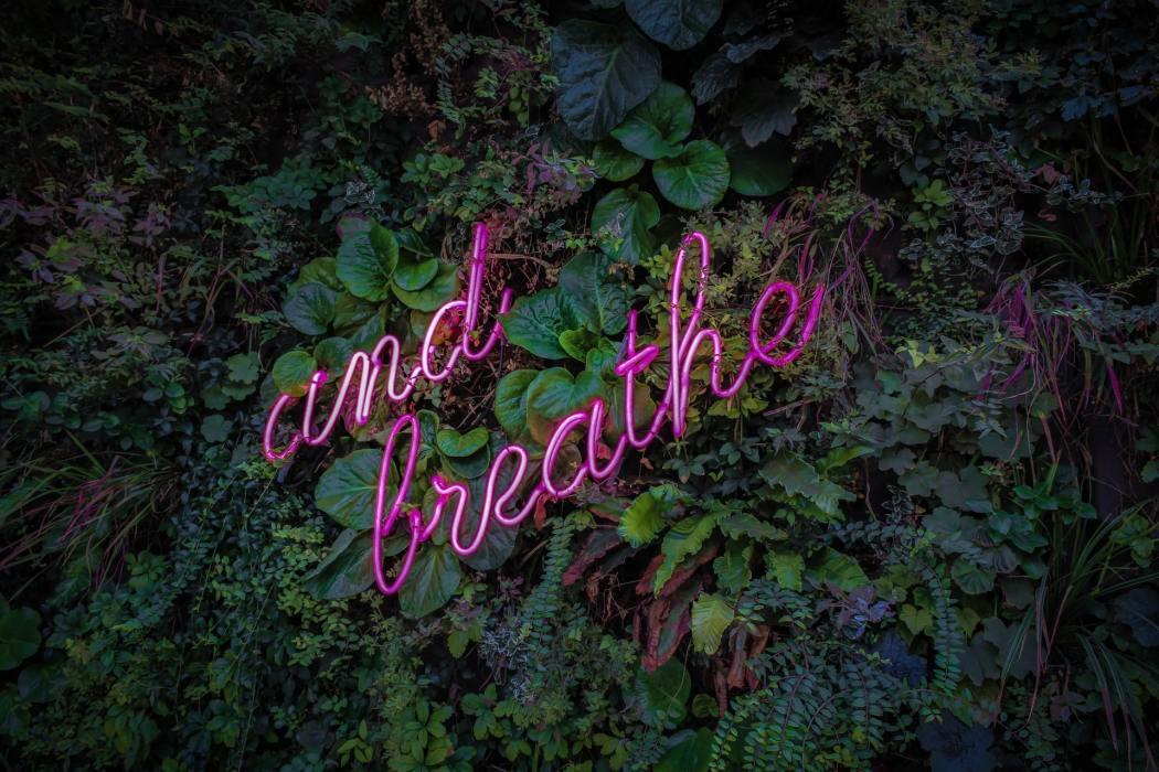 COPD, bronchites