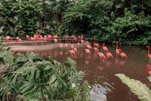Getaway: The 6 Best Cities in the Dominican Republic
