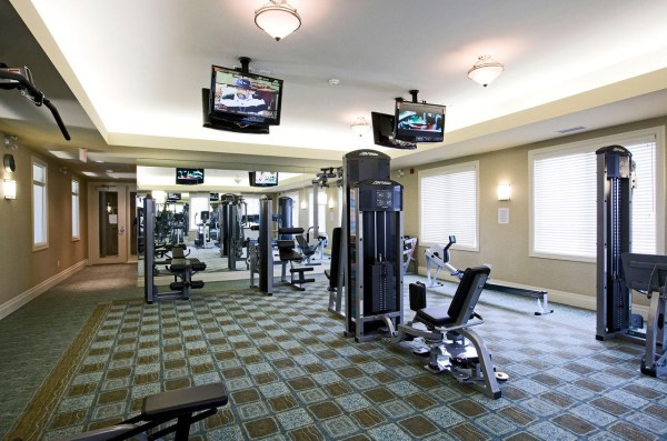 Commercial Gym Design Fitness - Vtwctr