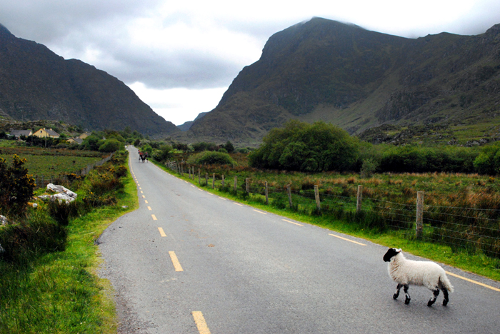 View of the Gap of Dunloe near Ring of Kerry Ireland
