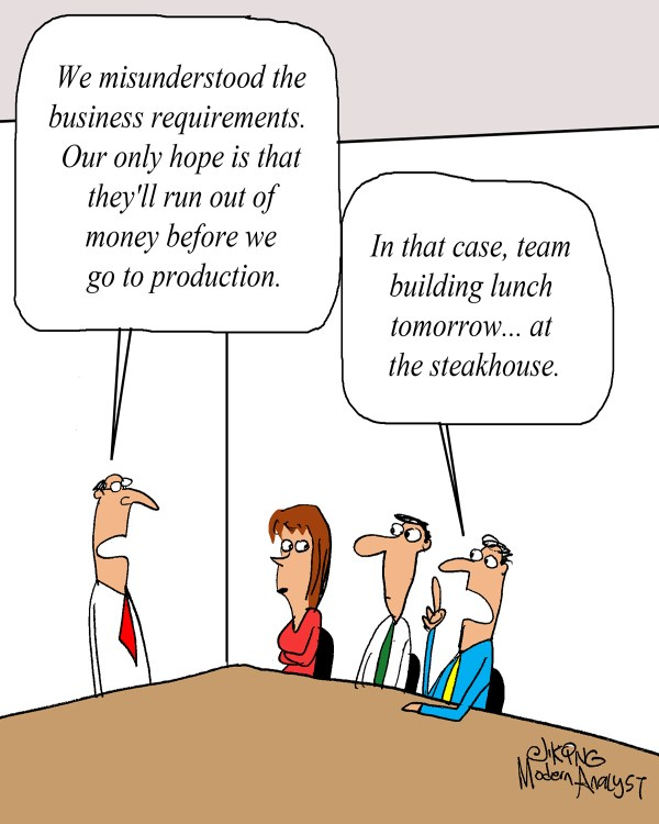 Business Requirements Cartoon