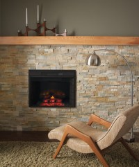 RETRO INSERT GAS LOGS FRANKLIN FIREPLACE  Fireplaces