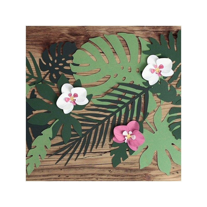 Dcoration de feuilles tropicales par 21  Modern Confetti