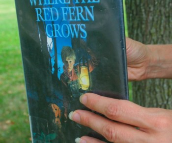 reading_wheretheredfierngrows