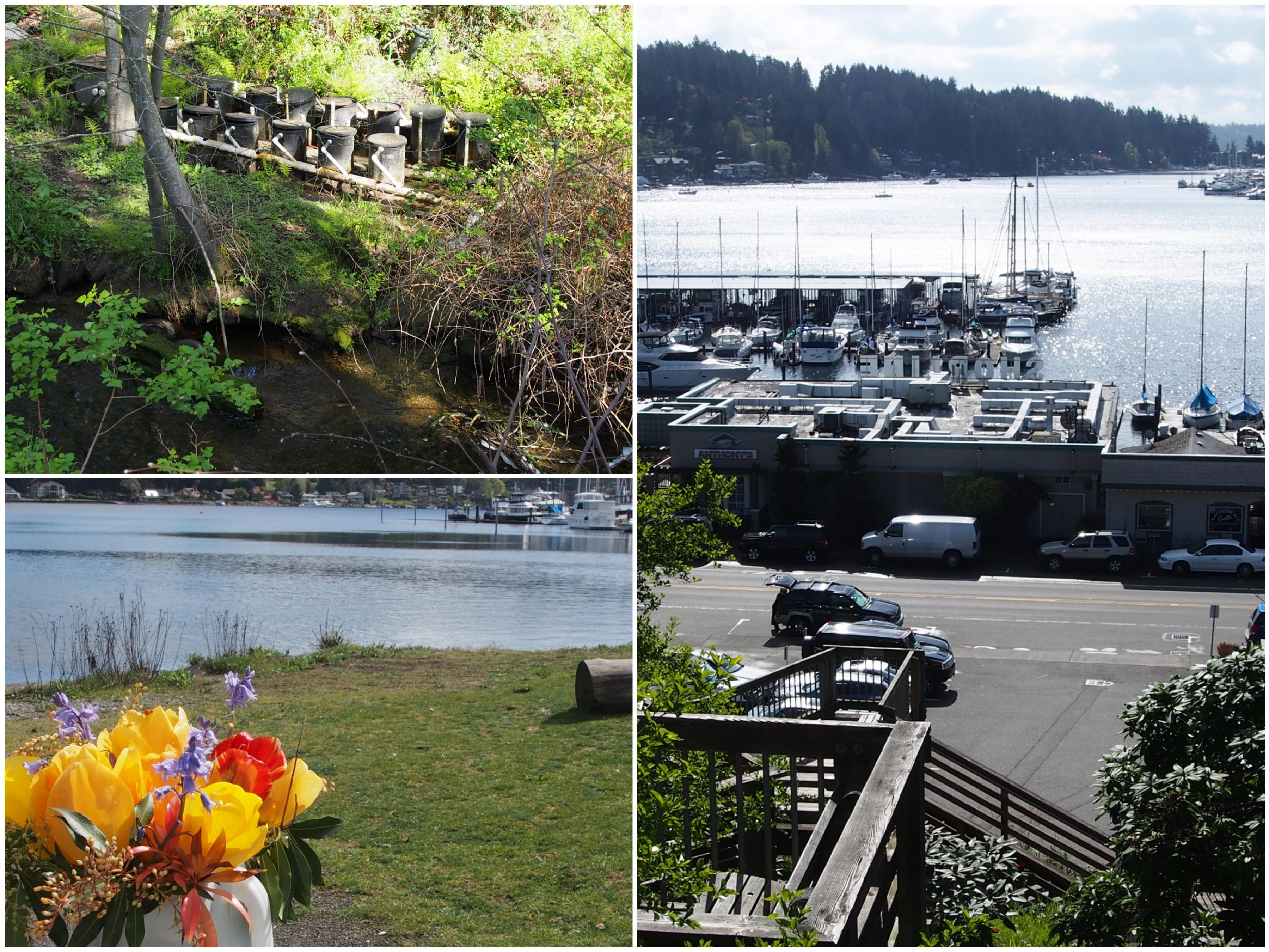 Skiffs To Spirits Top 5 Reasons To Visit Gig Harbor