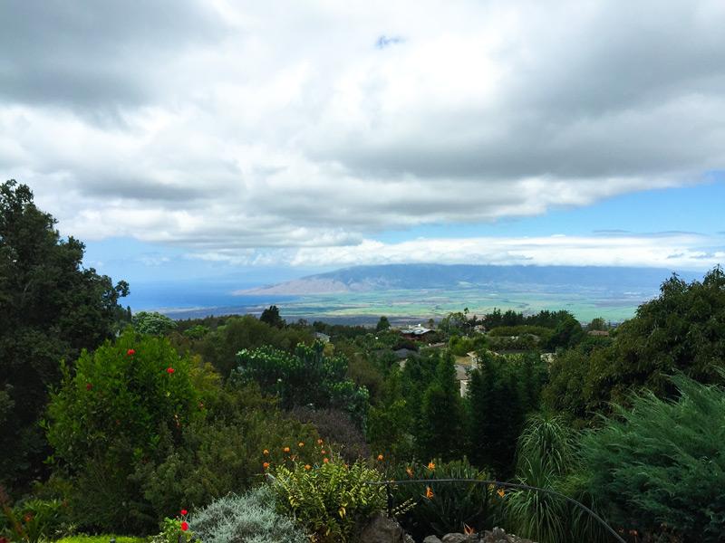Kula lodge and restaurant maui hawaii