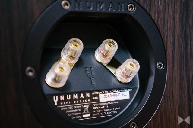Numan Reference 801 Anschluss-Terminal