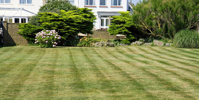 mow lawn stripes