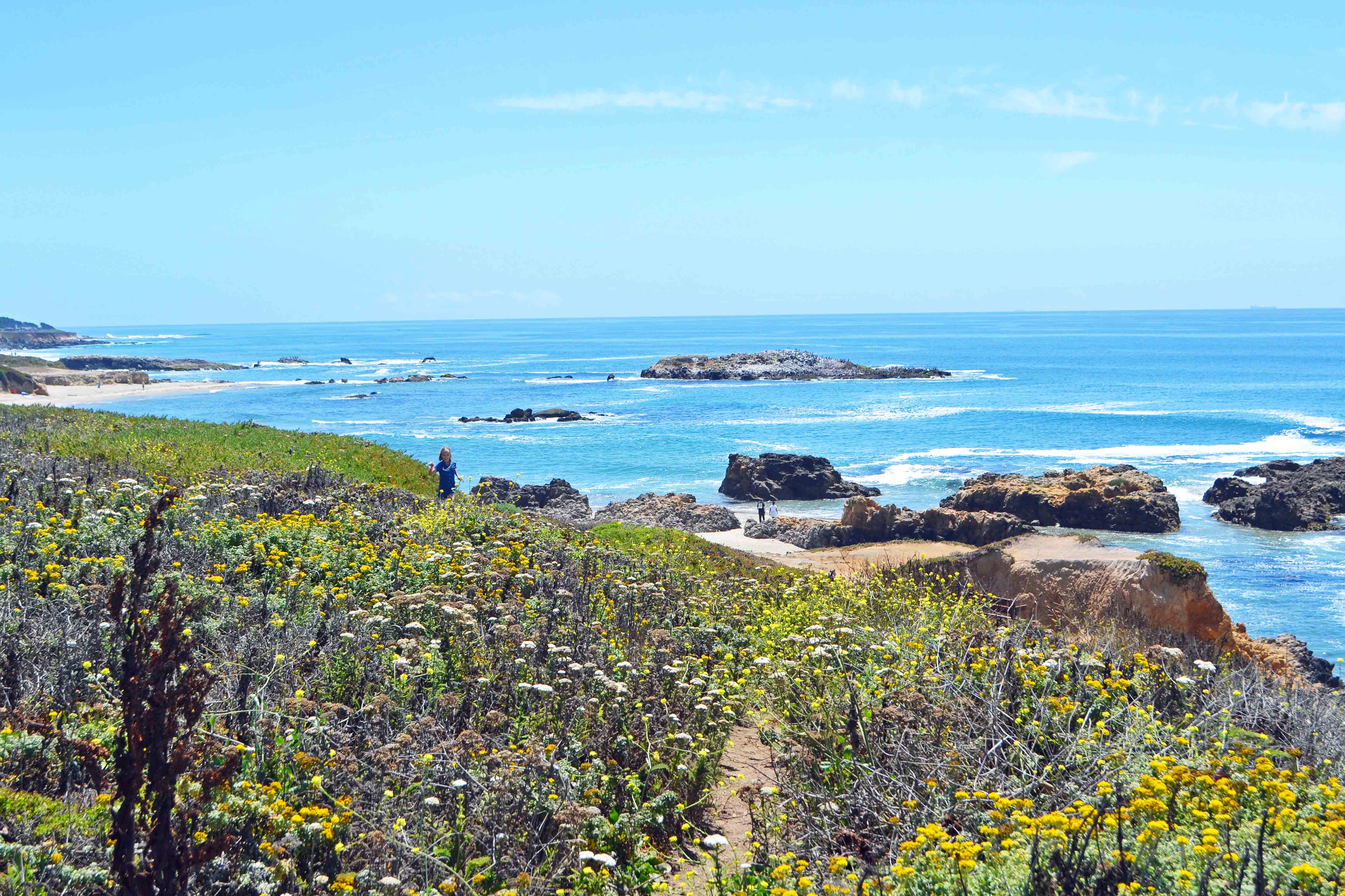 Pescadero Beach California Pacific Coast Highway 1 Road Trip Guide