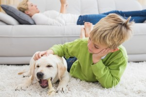 boy with dog pet odors