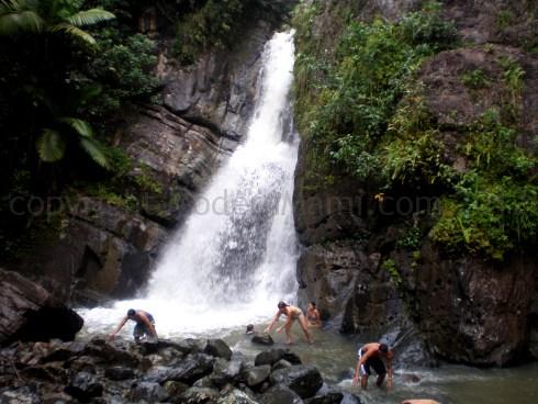 Mina Falls in El Yunque, Puerto Rico