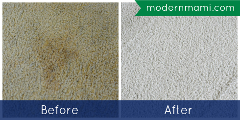 Cleaning Carpet Stains with Bissell Deep Clean Premier