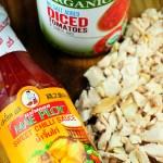 Sweet Chili Chicken & Rice Empanadas {Recipe}