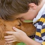 Pets and Lowering Kids' Stress