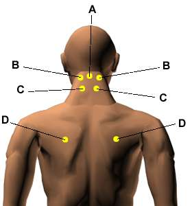 pressure points diagram massage toyota wiring harness 10 best acupressure to treat body pains and aches heavenly pillar
