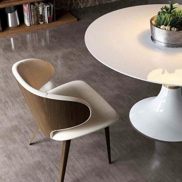 modern furniture store msf