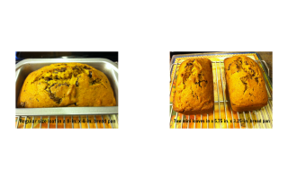 Chocolate Chip Pumpkin Bread…perfect for breakfast or dessert!
