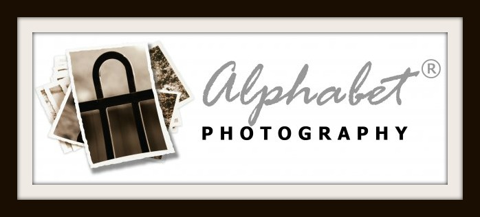 Alphabet Photography: The perfect customized gift
