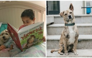 Children's Book a Useful Way to Learn About Pet Adoption