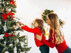 elegir árbol de navidad