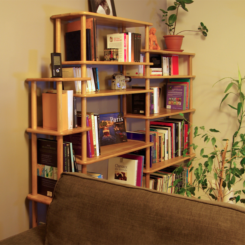 Solution Bibliotheque Modulable En Bois Massif
