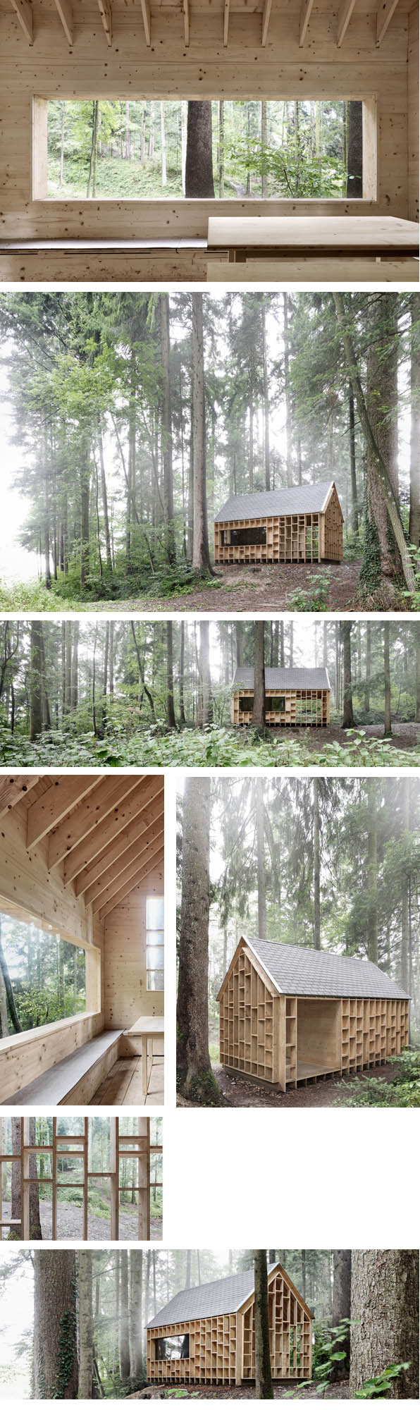 casa buhos bosque en wolfurt © photo adolf bereuter project berndriegger