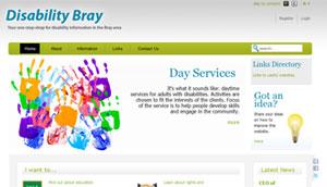 disability_bray
