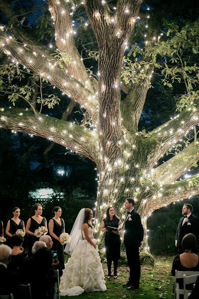 Moonlight Pennsylvania Wedding Under a Sparkling Tree at Aldie Mansion  MODwedding