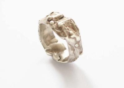 ANELLO TERRA (argento 1)